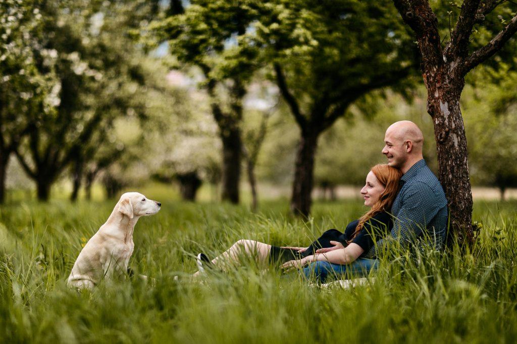 Rodinné a tehotenské foto - v sade