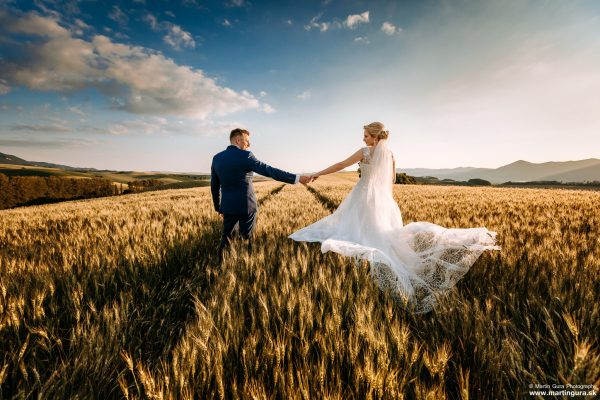svadba - pole a západ slnka